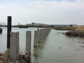 Dự án Cảng Cái Mép